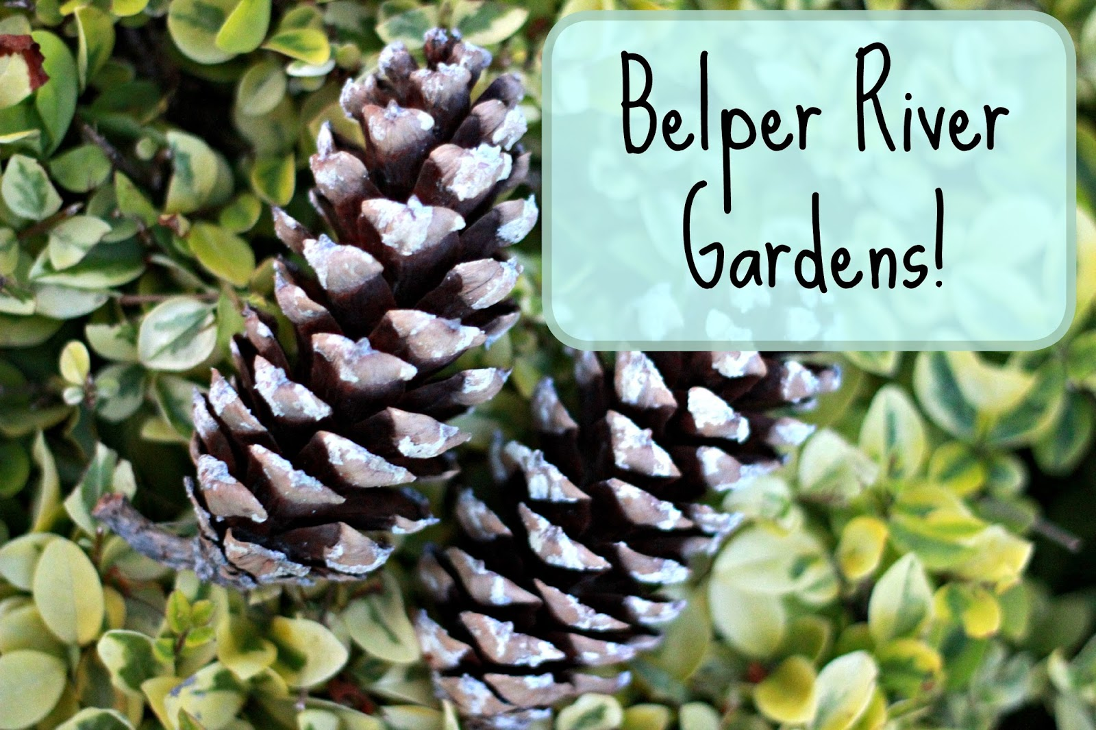 Belper River Gardens