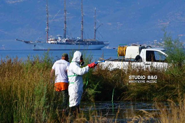 Συνεχίζεται εντατικά το Πρόγραμμα Καταπολέμησης Κουνουπιών από την Περιφέρεια Πελοποννήσου στην Αργολίδα (βίντεο)