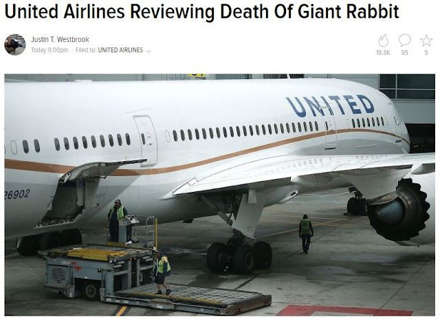 http://jalopnik.com/united-airlines-reviewing-death-of-giant-rabbit-1794650525
