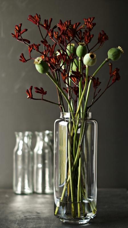 Blog + Fotografie by it's me! - Flower Friday, Mohnkapseln und dunkelrote Blütenzweige in einer Glasvase