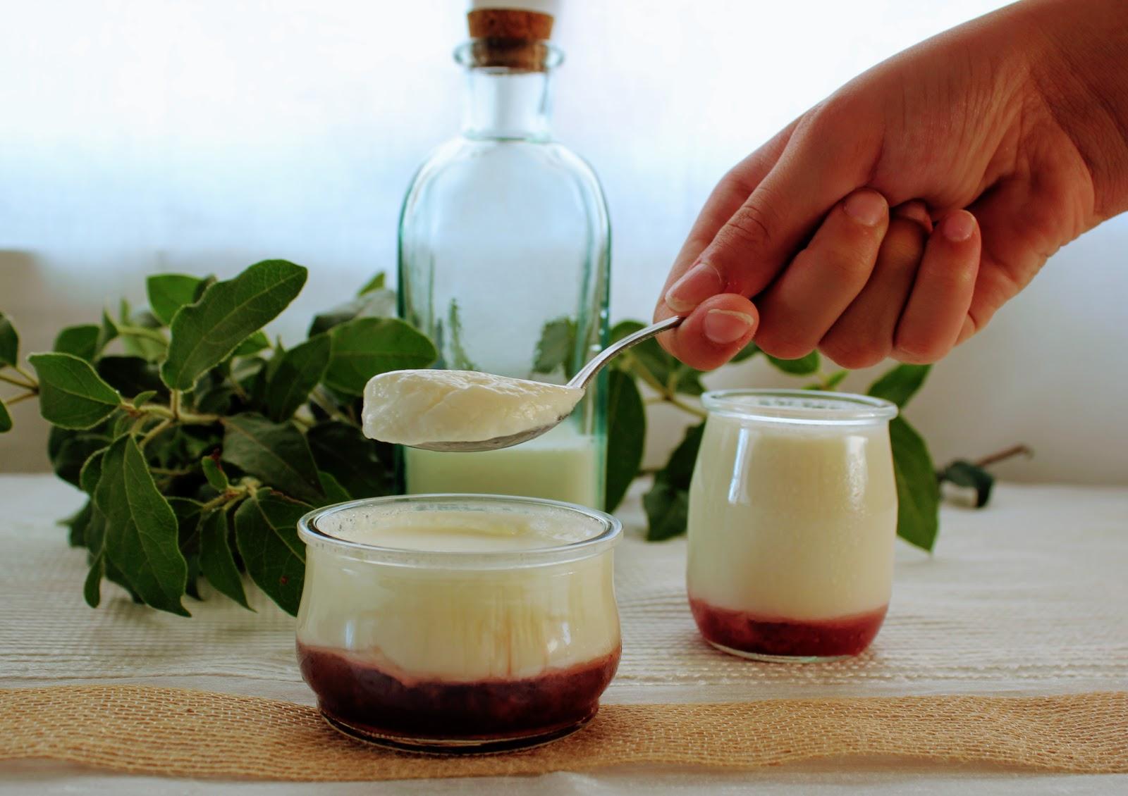 Lactosa la leche de soja