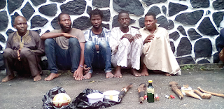 News: We sell human hands for N5,000 each – Cult members