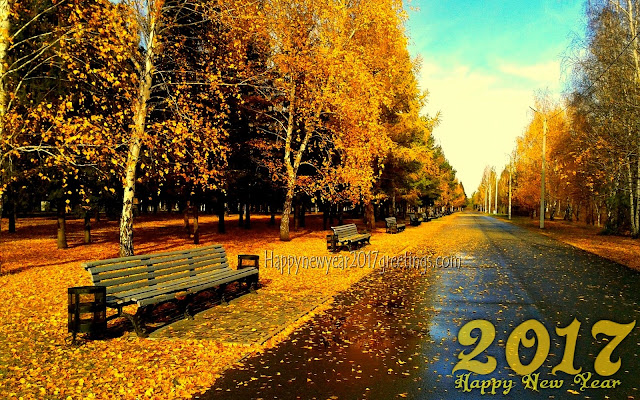 Happy New Year 2017 Full HD Nature Background Wallpapers