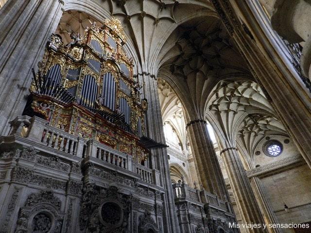 Catedral nueva de Salamanca