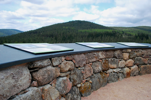 Viewing platform - Glen Tanar Estate walk