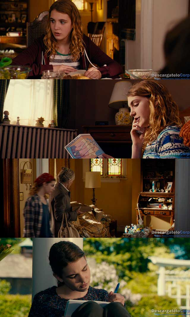 La gran Gilly Hopkins (2015) HD 720p Español Latino