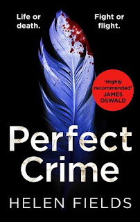 Perfect Crime by Helen Fields