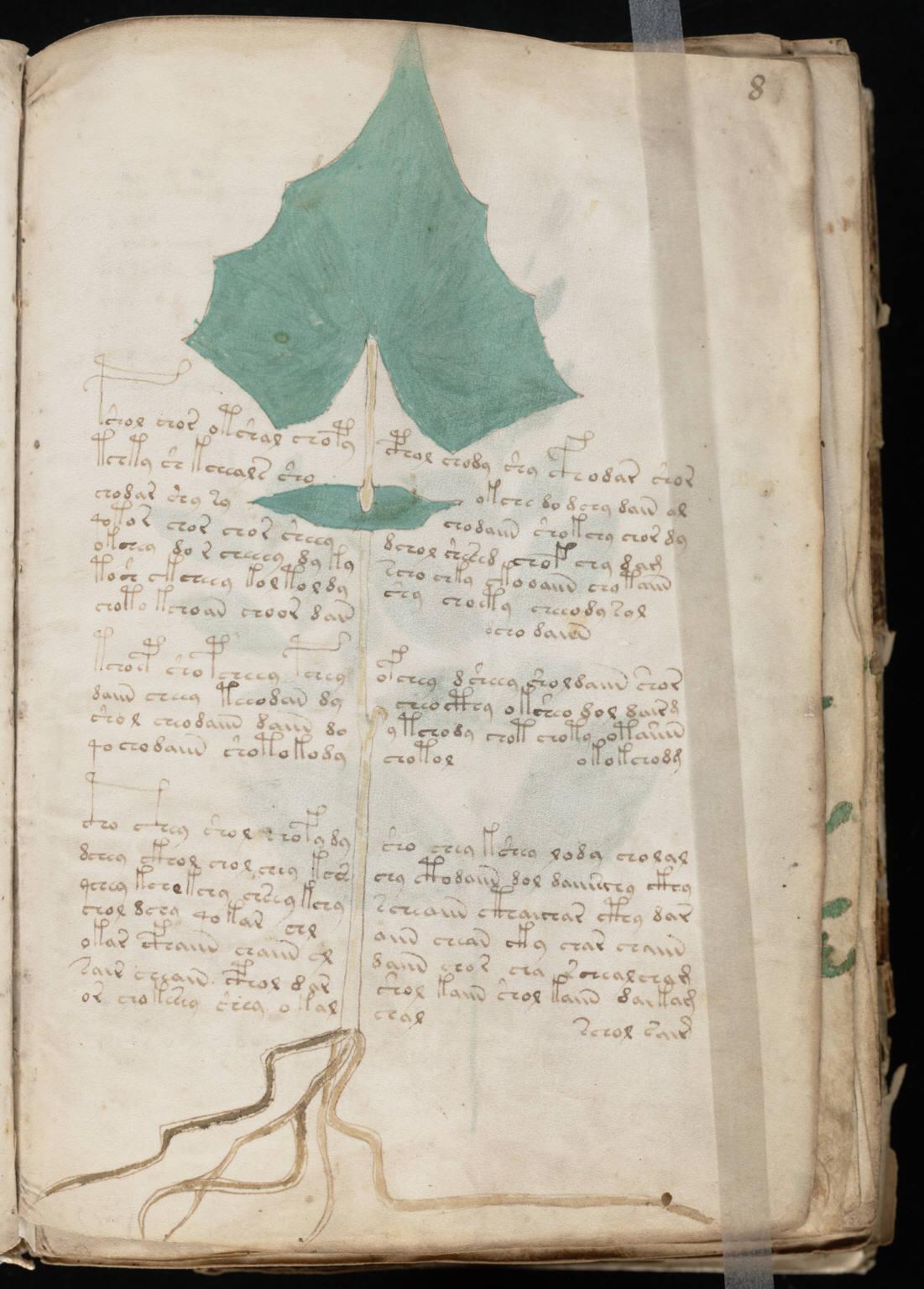 manuscrito017