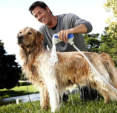 Man showering Golden Retriever using Oster's Hydrobath outdoors