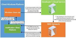 Network Developer