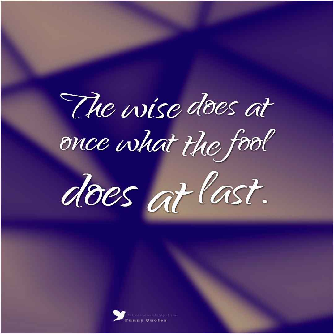 �The wise does at once what the fool does at last.�  �  Baltasar Gracian