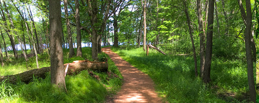the green circle trail in stevens point