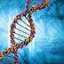 Leucemia mieloide acuta: scoperta sequenza di DNA non umano