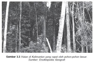 Usaha Pelestarian Lingkungan Hidup