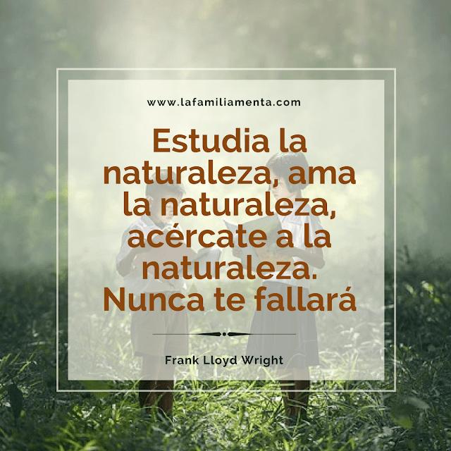 Estudia la naturaleza, ama la naturaleza, acércate a la naturaleza. Nunca te fallará.