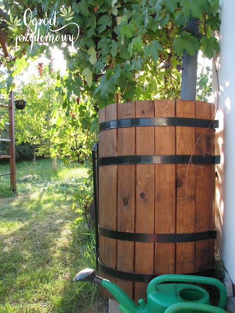 oszczędność wody, ogród przydomowy, ogród za grosze, oszczędzanie wody