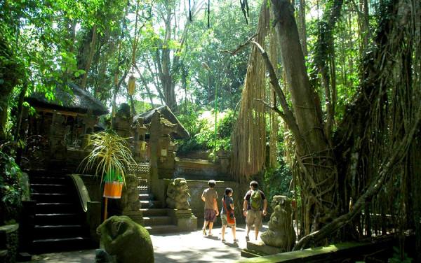 Taman Wanara Wana di Ubud