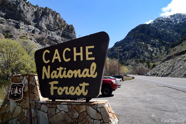 Entrance to Logan Canyon Cache National Forest