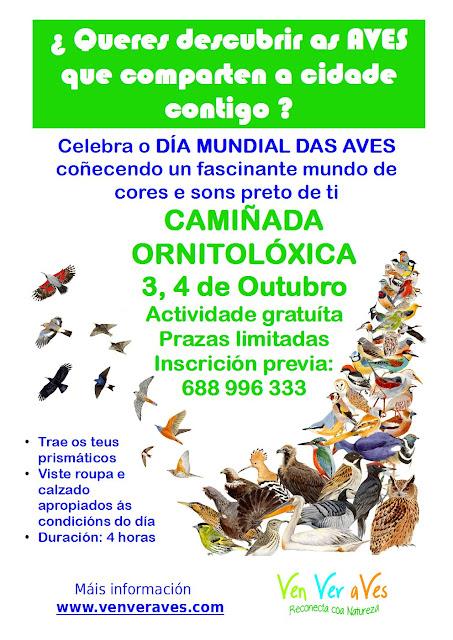 Cartel anunciando unha camiñada ornitolóxica en Sarria e Lugo para celebrar o día mundial das aves 2015