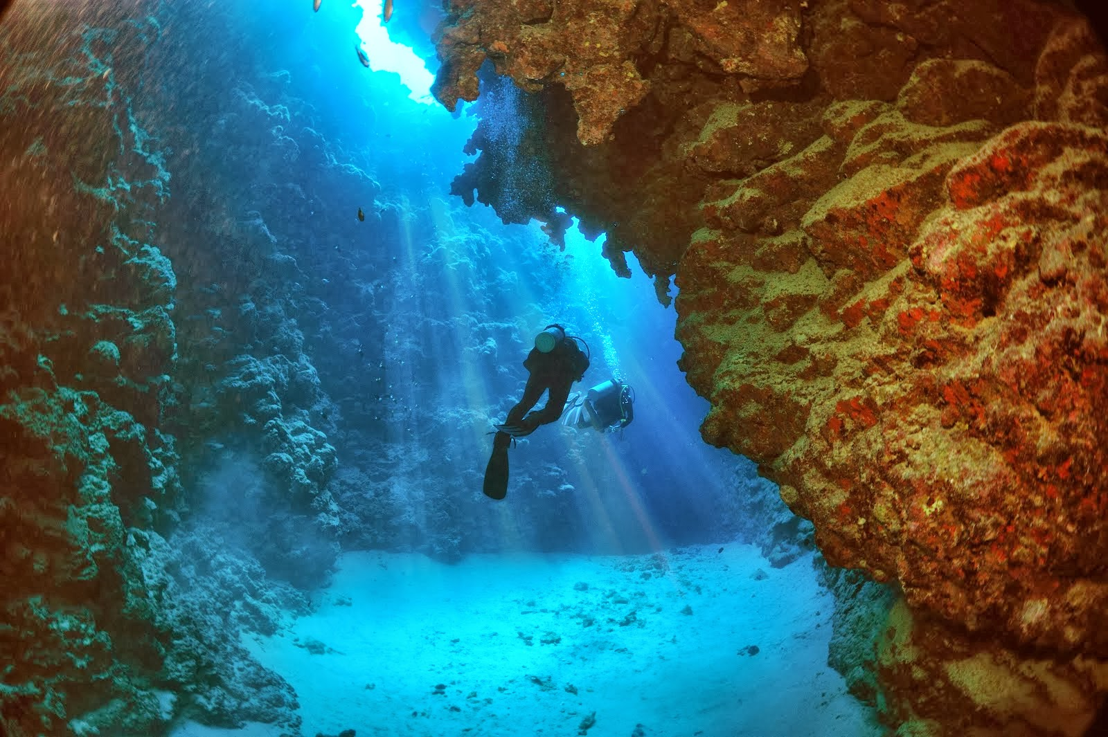 4 Amazing Scuba Diving Spots In Egypt