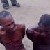 For Stealing cassava, see what was done to these men (Photo)