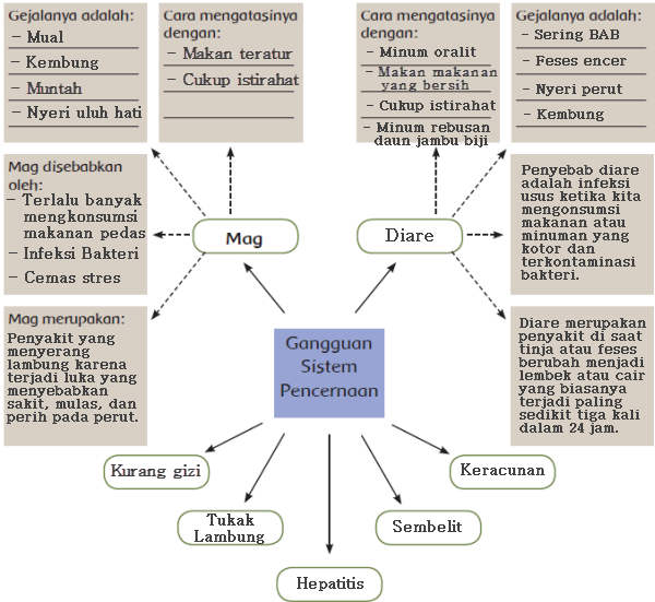 Gangguan Umum Sistem Pencernaan Manusia Kelas 5 Tema 3 Subtema 2 Pembelajaran 1 Imron Web Id
