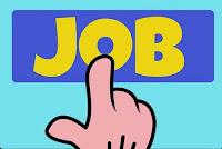 govt job 980 posts