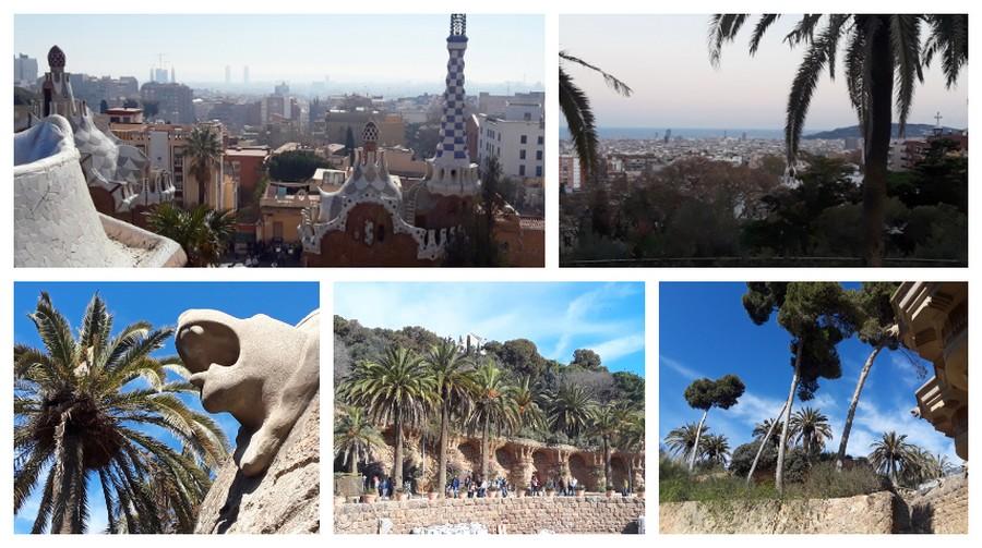 palmiers et panorama parc Guëll