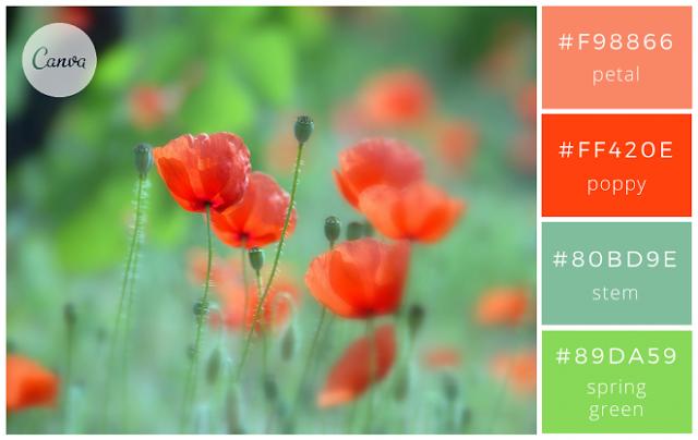 100 Kombinasi Warna Terbaik Untuk Desain Grafis