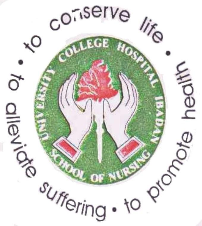 UCH Ibadan School of Nursing Admission Form 2019/2020 Session