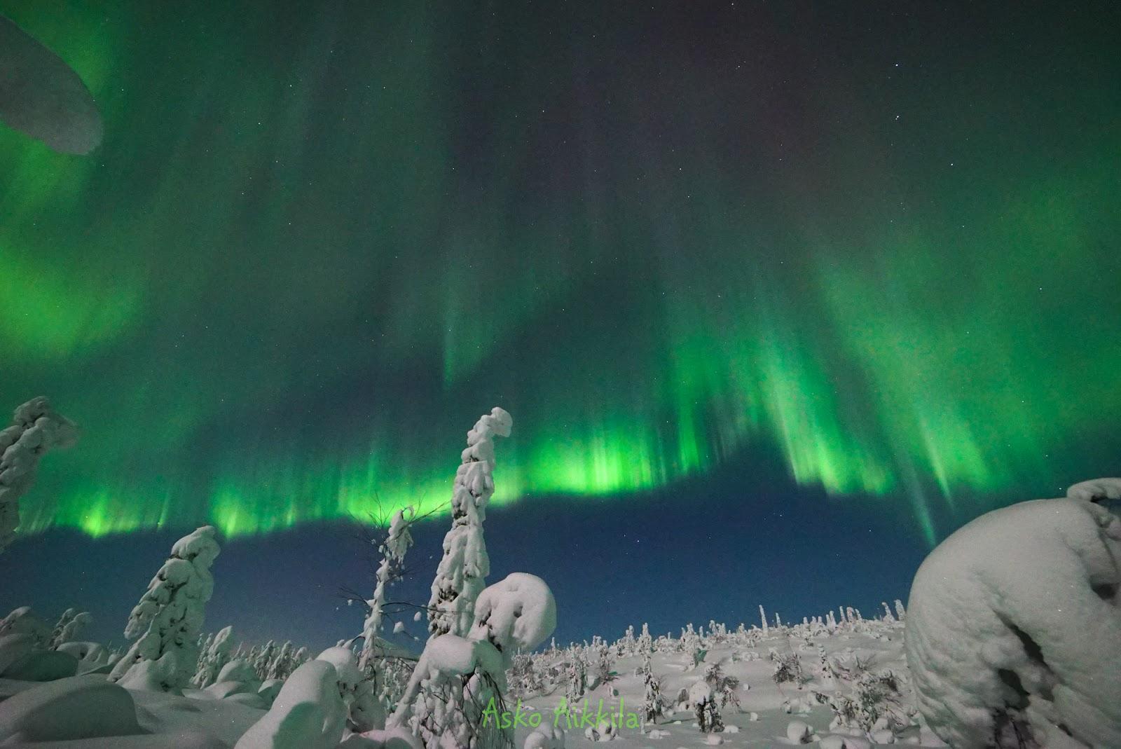 Zorza polarna sfotografowana w noc z 16 na 17.02.2016 r. (Credit: Asko Aikkila, Kuusamo Finlandia)