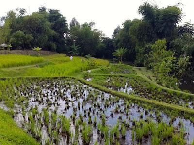 3D2N Bandung Trip: Dusun Bambu Family Leisure Park, Bandung