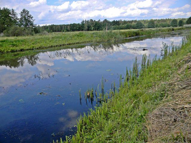 rzeka, Babimost, Kuligowo, cieki wodne