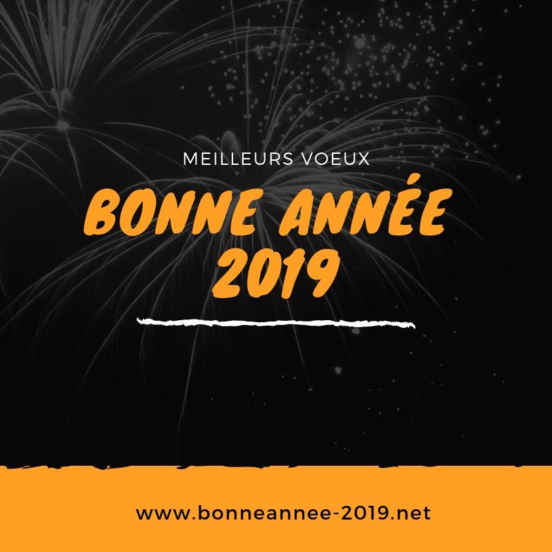 Bonne Année 2019 Bonne Année 2019 Messages Textes Sms Et