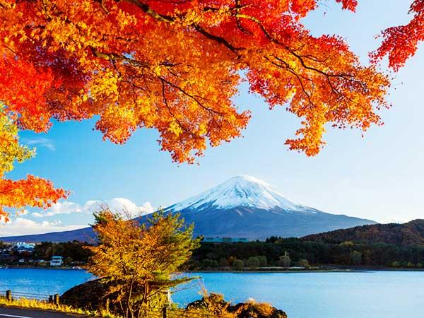 Du lịch Nhật Bản không thể không nhắc tới ngọn Nuisi vĩ đại này