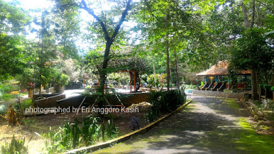 Hutan Kota Bungkirit di Kuningan, Tempat yang Tepat untuk Gathering