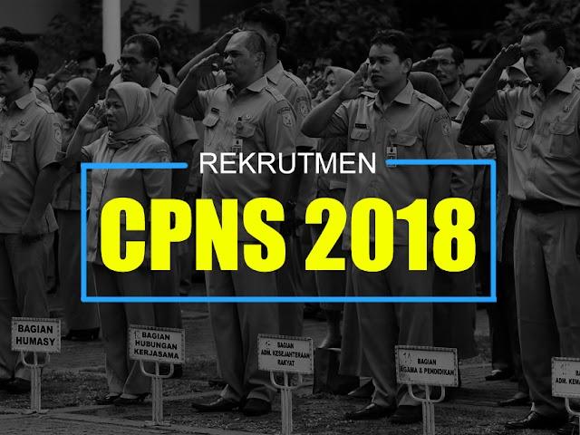 Penerimaan CPNS 2018 Dibuka 19 September 2018, Inilah Info Lengkapnya