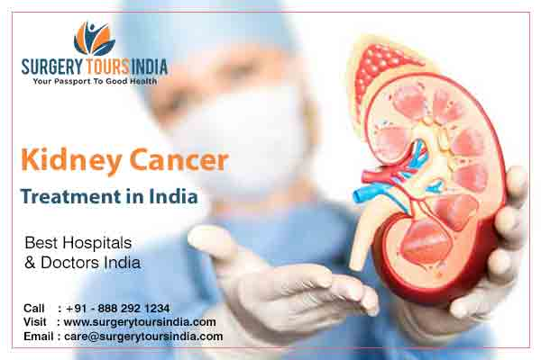 Kidney Cancer Treatment In India Best Kidney Cancer Hospital In India Surgery Tours India