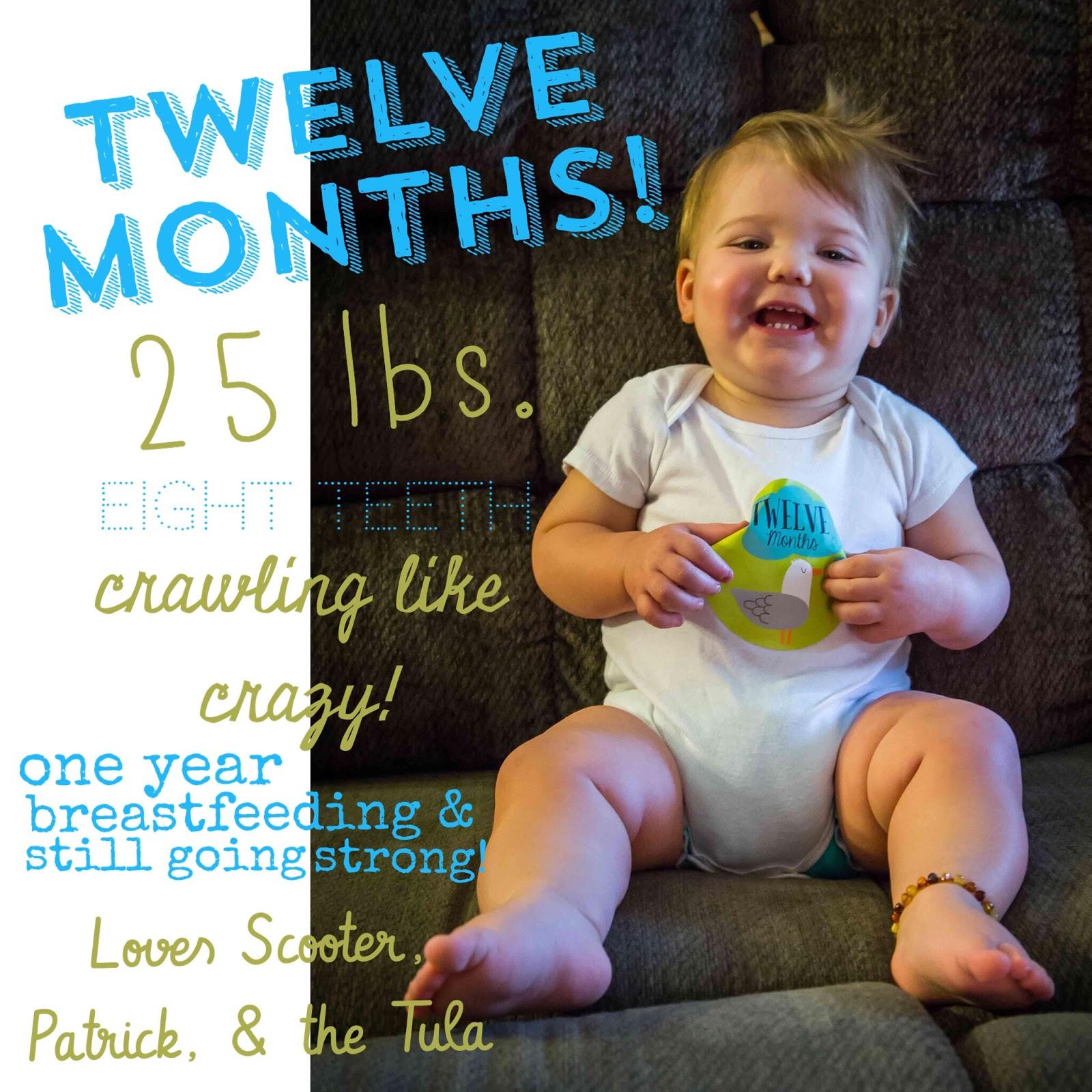 Scooter's World: Rosie at 12 Months