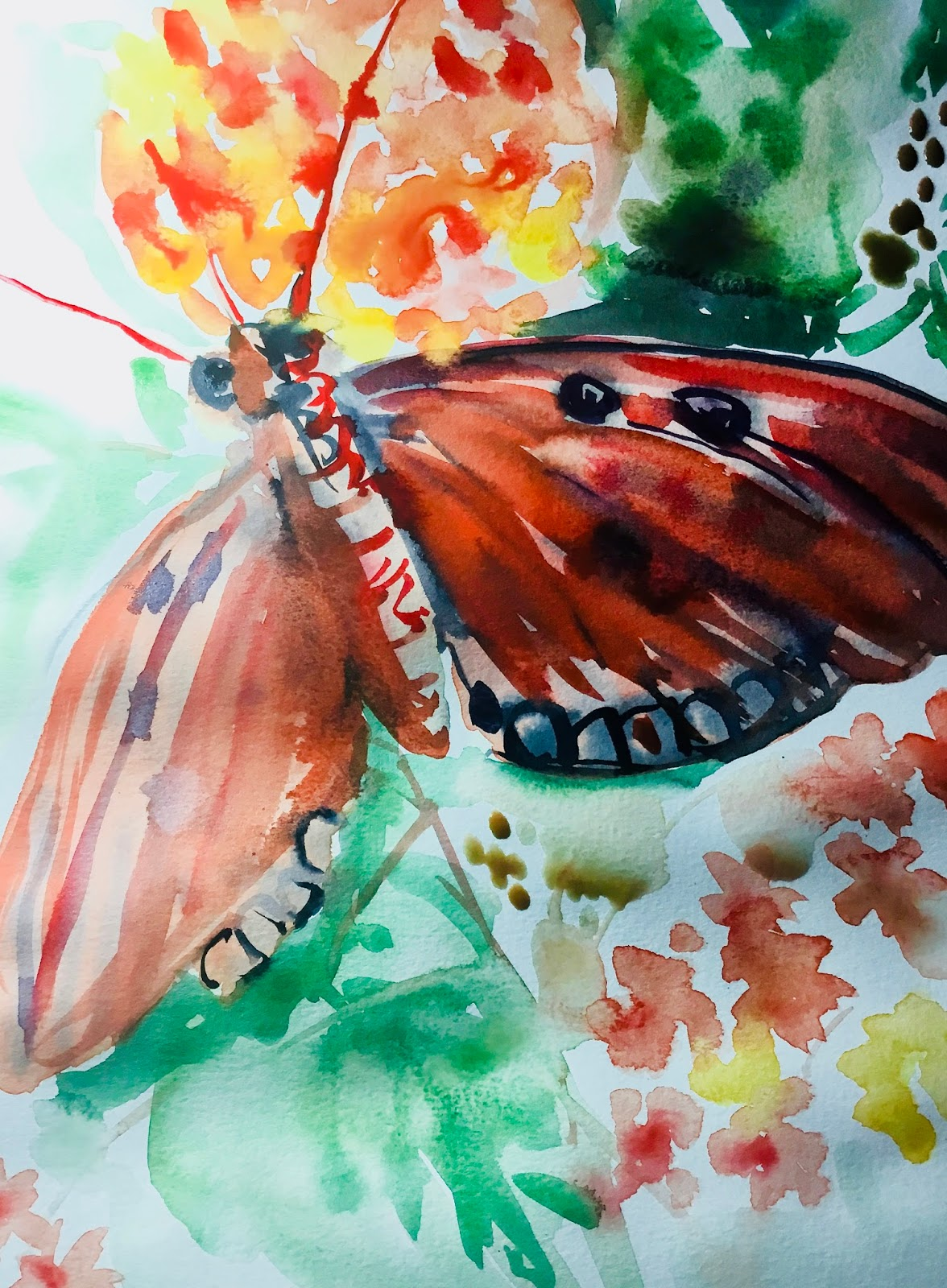 watercolour sketch of an orange butterfly