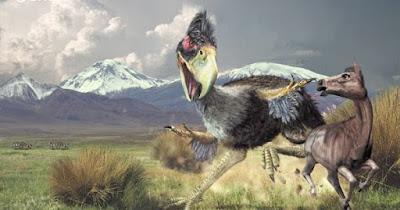 Brontornis Burmeisteri - ave gigante extinta