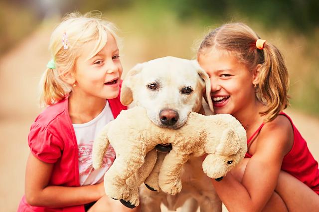 Benefícios do convívio de crianças com animais