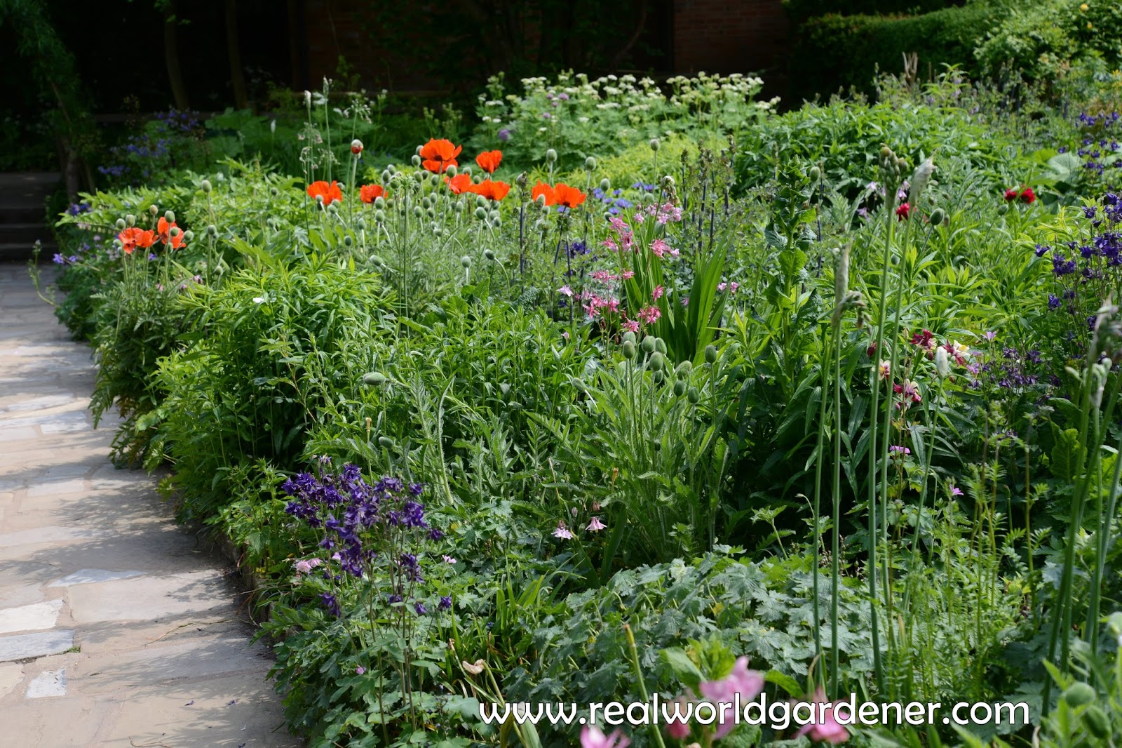 Real world gardener new cottage garden styles in design for Garden design podcast