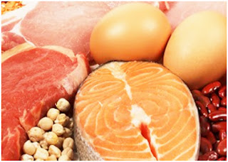 Protein eating regimen - What Does It suggest for your frame?