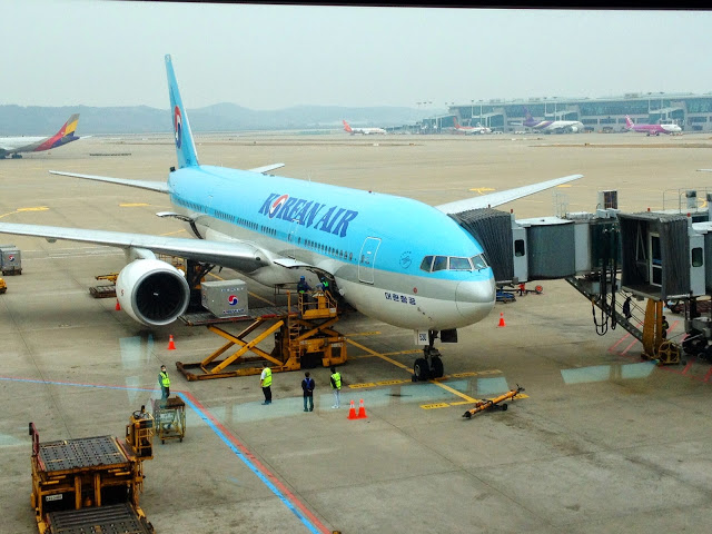 blue and white Korean air plane
