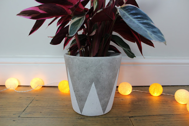 Spiked Interior Plant Pot