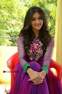 Actress Pooja Jhaveri Latest Stills in Purple Salwar Kameezt at Dwaraka Success Meet  0184.JPG