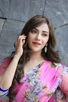 Angela Krislinzki Rogue Movie Fame Telugu Actress in Saree Backless Choli 127.JPG
