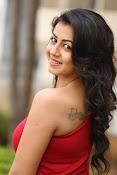 Nikki galarani latest sizzling pics-thumbnail-1