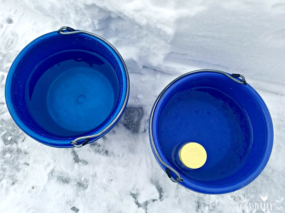 will salt water keep my chickens water from freezing